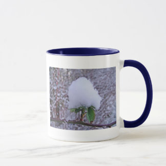 Cup of snow small piles on pretty plant