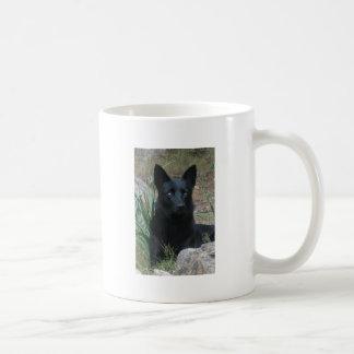Cup of Teutonenhund