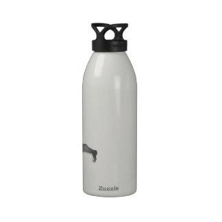 Cupid en plata botella de agua reutilizable