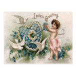 Cupid Forget-Me-Not Dove Key Daisy Postcard