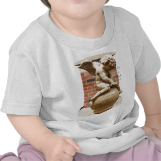 Cupid Camisetas