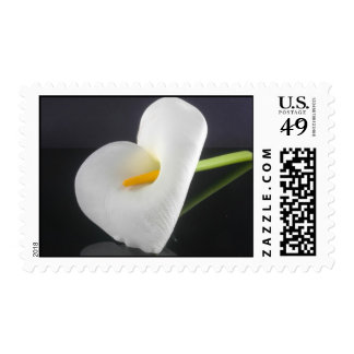 Cupid's Arrow through Lily heart Postage