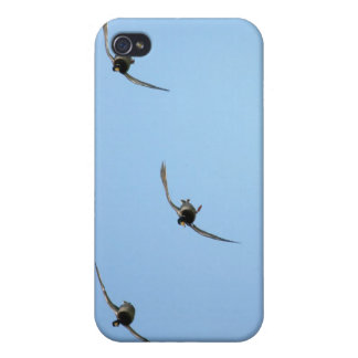 Cupped & Committed-Ducks iPhone 4 Cover
