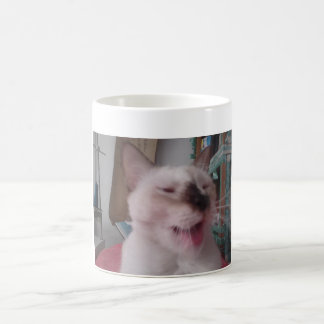 Cups for drinks gatuno