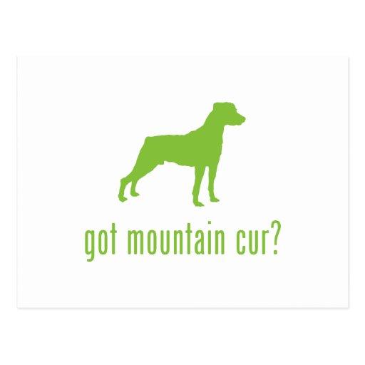 Cur de la montaña postales