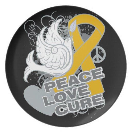 Curación del amor de la paz del cáncer del apéndic plato para fiesta