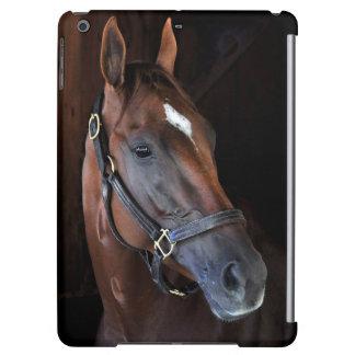Curalina iPad Air Cover