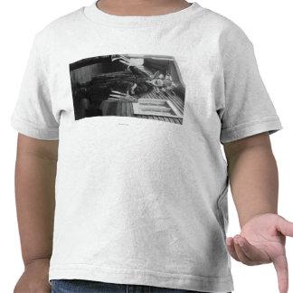 Curandero esquimal y muchacho enfermo en Alaska Camiseta