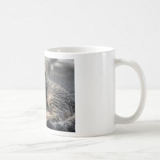 Curbside Kitten Coffee Mug