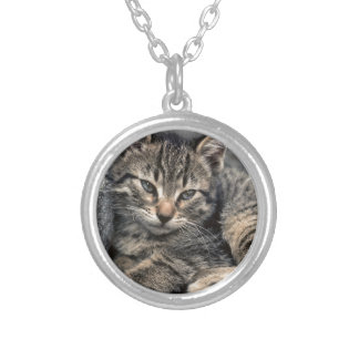 Curbside Kitten Silver Plated Necklace