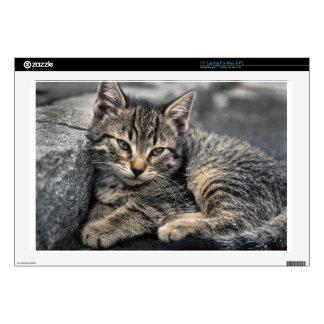 Curbside Kitten Skin For Laptop