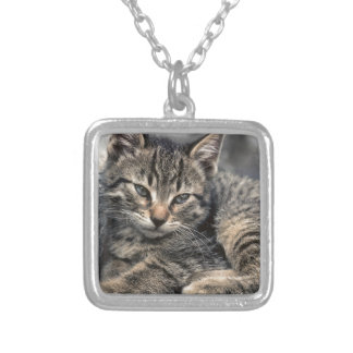 Curbside Kitten Square Pendant Necklace