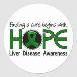 Cure Begins With Hope 5 Liver Disease Round Stickers