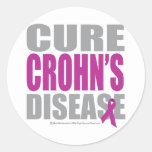 Cure Crohn's Disease Classic Round Sticker