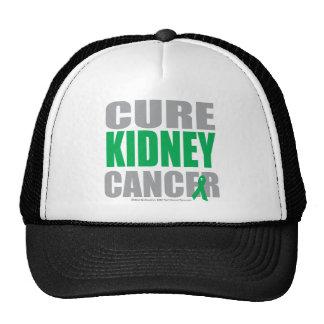 Cure Kidney Cancer Trucker Hat