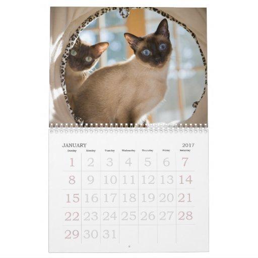 Curiosidad Calendarios