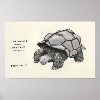 curiosidades de la tortuga posters