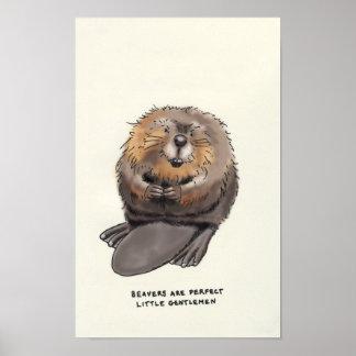 curiosidades del castor póster