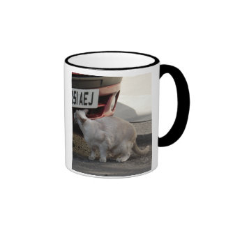 Curiosity is the spice of life ringer coffee mug