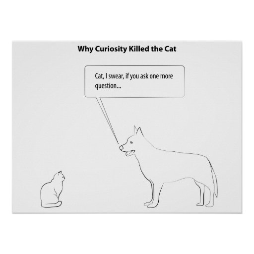 curiosity-killed-cat-2012-03-11-001-01 poster