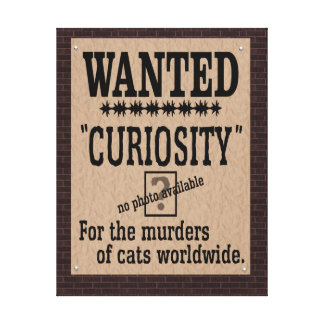 Curiosity Killed the Cat - Brick Background Canvas Print