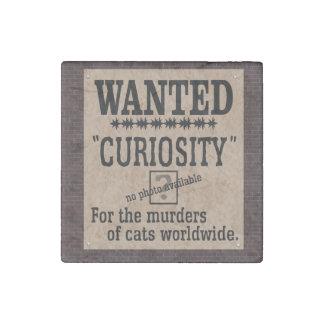 Curiosity Killed the Cat - Brick Background Stone Magnet