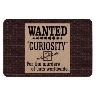 Curiosity Killed the Cat - Brick Background Flexible Magnet