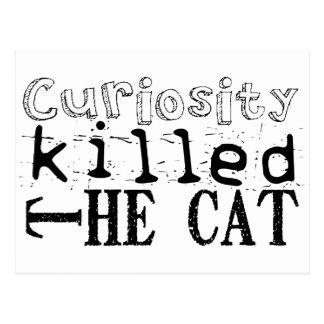 Curiosity killed the Cat - Proverb Postcard