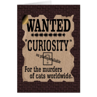 Curiosity Killed the Cat Wanted Poster - Vintage Card