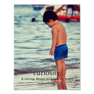 CURIOSITY PHOTOGRAPHY KID IN THE BEACH POSTER