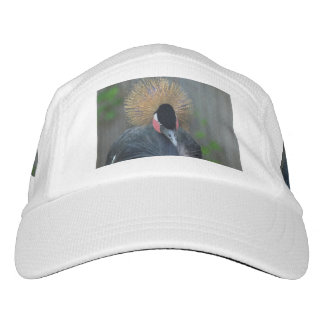 Curious African Crowned Crane Hat