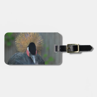 Curious African Crowned Crane Luggage Tag