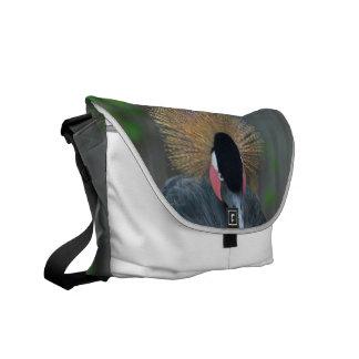 Curious African Crowned Crane Messenger Bag