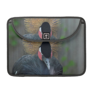 Curious African Crowned Crane Sleeve For MacBook Pro