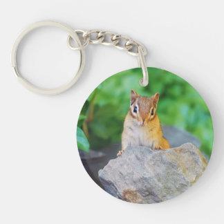 Curious Baby Chipmunk Keychain