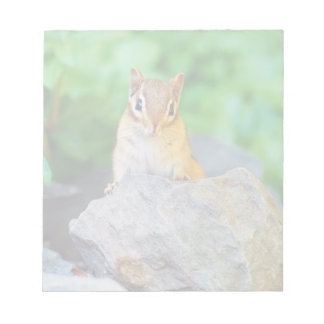 Curious Baby Chipmunk Notepad