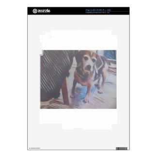Curious Beagle iPad 2 Decals