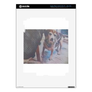 Curious Beagle iPad 3 Skin