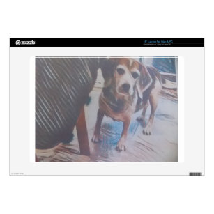 Curious Beagle Skins For Laptops
