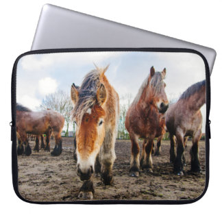 Curious Belgian Draft Horses From Below Computer Sleeve