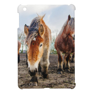 Curious Belgian Draft Horses From Below Cover For The iPad Mini