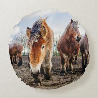 Curious Belgian Draft Horses From Below Round Pillow