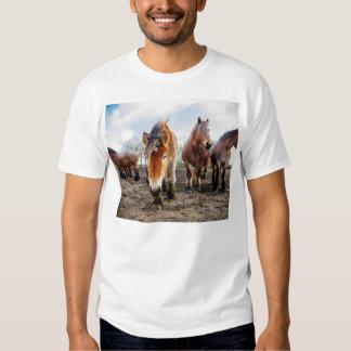 Curious Belgian Draft Horses From Below T Shirt