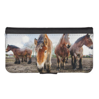 Curious Belgian Draft Horses From Below Wallet Phone Case For iPhone SE/5/5s