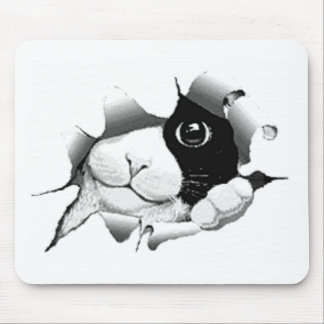 Curious Black and White Kitty Cat Mouse Pad