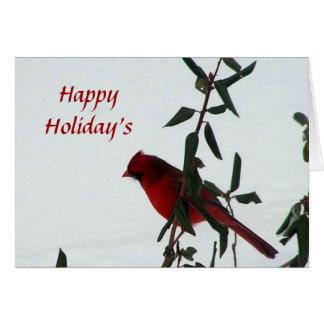 Curious Cardinal Bird Holiday Card