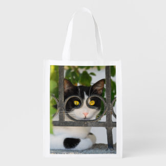 Curious Cat Eyes with Spectacles Frame Funny Photo Grocery Bag