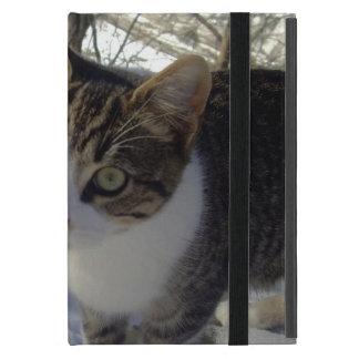 Curious Cat iPad Mini Cover