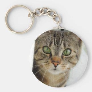 curious cat keychain