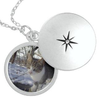 Curious Cat Locket Necklace